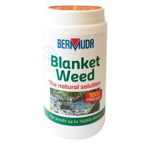 Bermuda Blanket weed 800gm