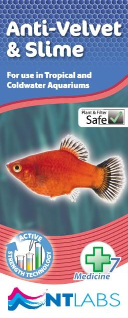 Aquarium Anti-Velvet & Slime 100ml