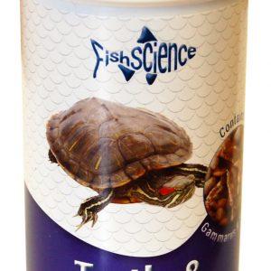 Turtle & Terrapin