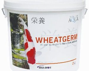 Wheatgerm 2000g (3-4mm/small)