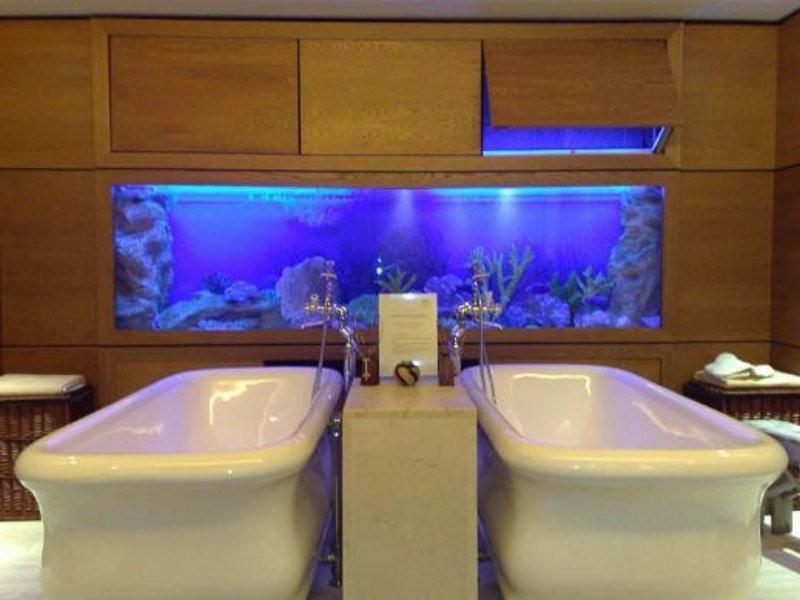 Tropical Fish Tanks Northern Ireland