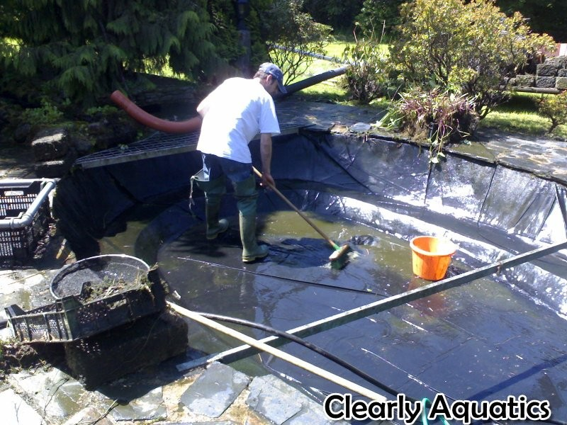 pond cleaning maintenance , equipment servicing, fish health and consultancy services for all things pond or water related